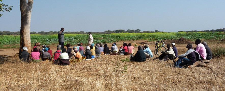 KATC farmers