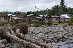 Felled trees and erosion from Typhoon Yolanda in Leyte, Philippines, show the exposure of villagers to natural disasters (photo: K. V├ñthr├Âder).
