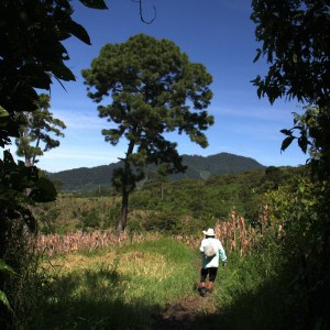 A Tseltal farmer in Chiapas on his way to work (Photo: E. Carrasco).