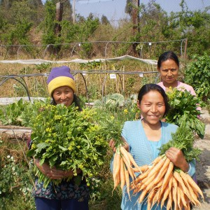 Taking care of creation: women farmers in Darjeeling, India, display vegetables from their organic square-metre gardens at the Society of Jesus Agricultural and Social Institute (photo: J. Davidson)