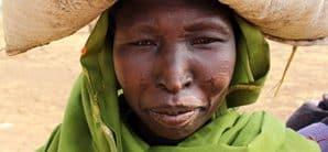 Doro IDP