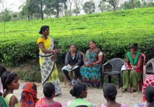 HLDRC meeting in a tea estate. (Photo: HLDRC)
