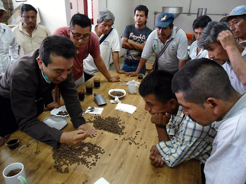 Coffee school with indigenous participants from the Ts'umbal Xitalha' cooperative in Chiapas, Mexico. (Photo: Yomol A'tel)