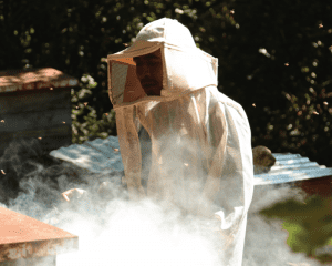 A beekeeper working with Se Chabtic (our honey), a Yomol A'tel cooperative affilated with Comparte, in Chiapas, Mexico. (Photo: Yomol A'tel)