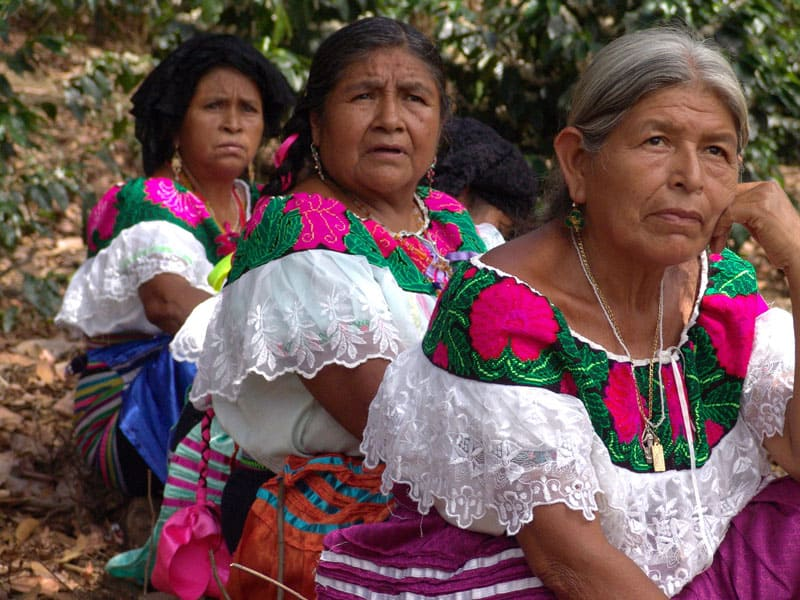 Indigenous Tseltal women in Chiapas, Mexico, participate in their community's assembly.
